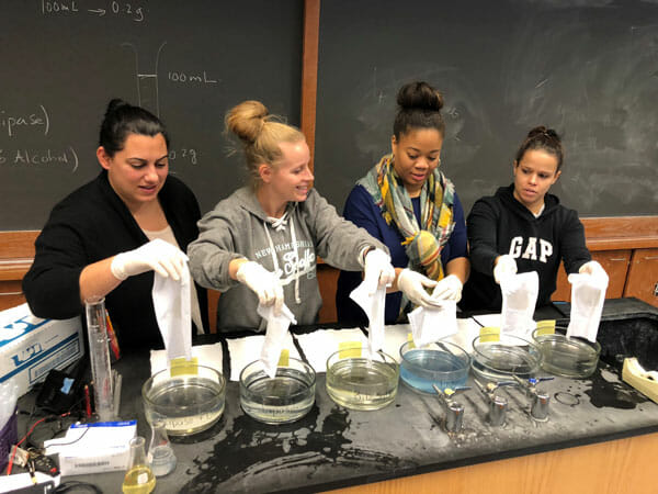 Noyce Masters Teaching Fellows working on a chemistry project during a graduate course at the College of Staten Island.